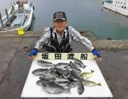梅雨グレ好期到来☆20匹の釣果 黒島の磯
