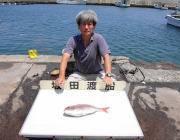 黒島・湾内の筏でマダイ・チャリコの釣果
