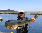 黒島の磯 トップでシイラ106cmがヒット☆