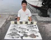 湾内の筏にて良型チヌ&カワハギの釣果