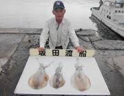 黒島の筏 泳がせ釣りでアオリイカ3バイ!
