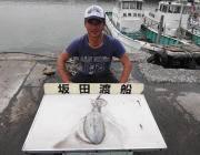 黒島の磯でヤエン釣り アオリ1.3kg