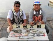 黒島の筏でチヌ五目釣り