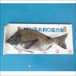 大丹生カセ  チヌ47.5cm他ガシラ