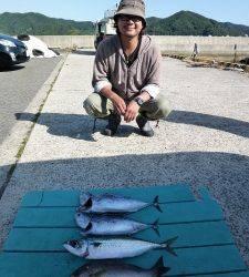 カゴ釣りは色々釣れています、神谷一文字