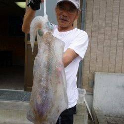 湯浅の磯でのヤエン釣り!2kg級〜