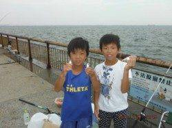 【今日も楽しくサビキ釣り~♪】南芦屋浜