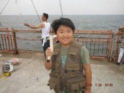 【夕方のサビキ釣りも好調~♪】南芦屋浜
