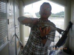 姫路市立遊漁センターで探り釣り、メバルにアコウも釣れました♪