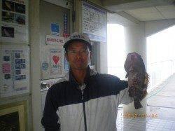 本日も根魚釣れています!姫路市立遊漁センター