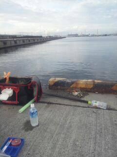 汐見埠頭昼過ぎからの紀州釣りでチヌGET!