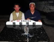 黒島の磯・筏で納得サイズのアオリイカ
