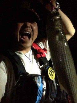 大阪南港 ボラの下にシーバスはいるものの釣果はボラ