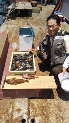 沖の一文字、しらさの浮き釣りで根魚& チヌ