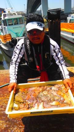 岸和田旧一文字で2.4kgのタコ!!数釣りも楽しめます♪