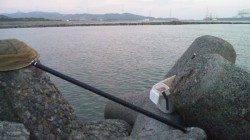 濱ノ瀬漁港 フカセ釣りでグレ29cm 夕方の上げ潮狙い☆