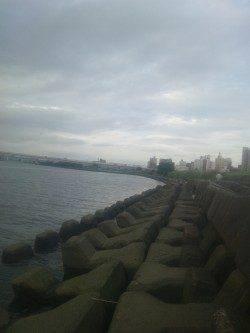 淀川河口でカワアナゴの釣果