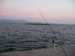 田ノ浦漁港で25cmまでのアジ6匹の釣果