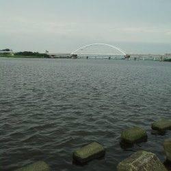 淀川河口、ぶっ込み釣りでキビレ狙いも・・・