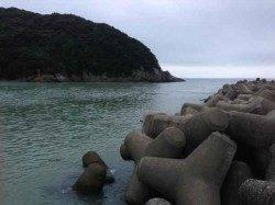 日置川河口 フカセでグレ〜34cm4尾・ヘダイ23cm タナは2つ前後