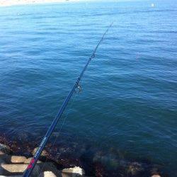 東二見人工島で穴釣り釣果