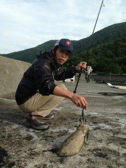 小浜港 エギングで朝マズメにコウイカがヒット
