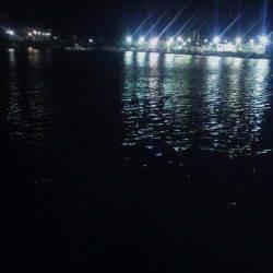 深日漁港 エギングはアタリ無く、ガシリングでガシラゲット