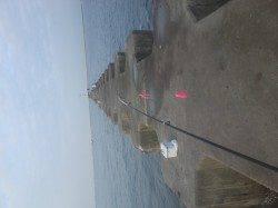 武庫川河口でオクトパッシング 際より沖でHIT