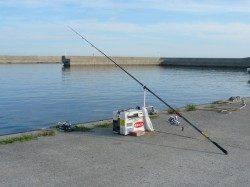 鳥飼 投げ釣りでキス〜15cm34匹 アジの22cmも
