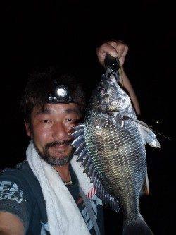 大阪南港でチニング、釣果も激熱!