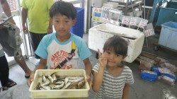 堺漁港でFamilyサビキ・エギング☆やったー!初アオリ!