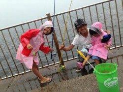 【家族で楽しい!南芦屋浜サビキ釣り】