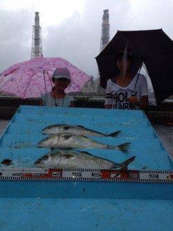 マリーナシティ海上釣り堀で青物に真鯛!