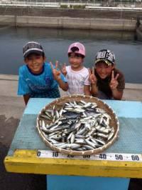マリーナシティ海釣り公園、サビキ好調でお子様も大喜び!