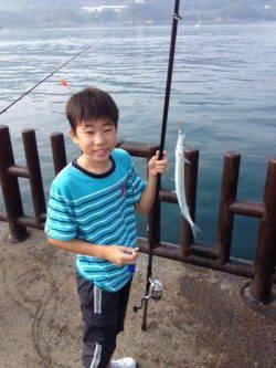 マリーナシティ海釣り公園 サビキでアジ&サヨリ 朝一釣果