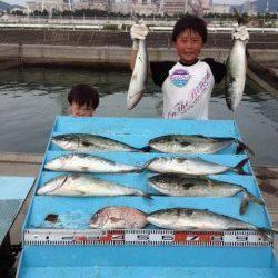 マリーナシティ海洋釣り堀 ハマチ&マダイで楽しめる