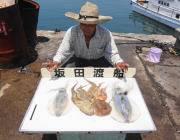 黒島の筏・磯でヤエン釣り アオリとタコ