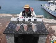 【11日】ヤエンでのアオリイカ釣果