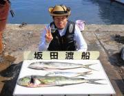 黒島の磯でルアー釣り、ミノーでシイラがでました!