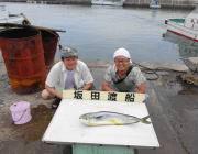 黒島の筏でのルアー釣りでシイラ75cm