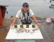 快釣!黒島の磯でのエギング釣果
