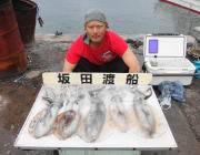 泳がせ釣りでアオリイカ5ハイ! 黒島の磯