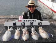 ヤエンでアオリイカ5ハイ☆黒島の筏