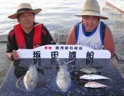黒島の筏 アオリイカ・マルアジ・カワハギ・チャリコ