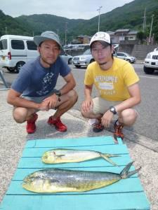 神谷沖一文字 のませでシイラ〜90cm2匹の釣果