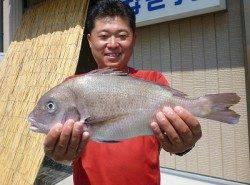 紀州釣りでマダイをゲット! 湯浅の磯