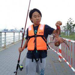 大阪南港 タコジグでタコ1パイ カラーは赤がオススメ