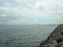助松埠頭 タコジグの探り釣りでタコ4ハイ 6時〜9時過ぎの釣果