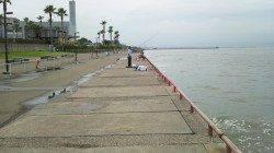 鳴尾浜海釣り公園、初めて投げサビキという釣り方にチャレンジ