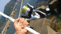 洲本川の河口でのキス釣り釣果
